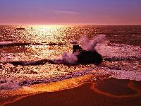 Ток золотой пляж отзывы